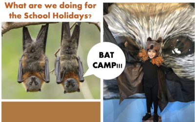 School Holidays City Bat Camp is Here!