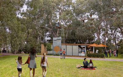 Tree Climb Adelaide: New Heights