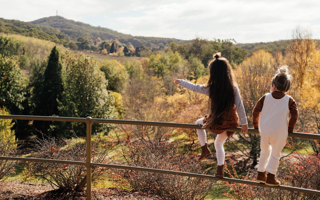 Mount Lofty Botanic Garden is OPEN again!