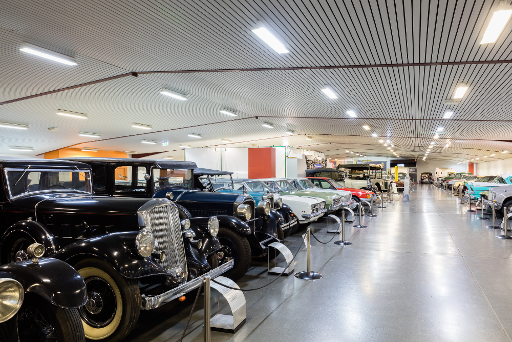 Start your engines! The first major South Australian Museum opens TODAY at 10am!