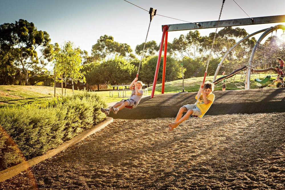 flying fox bonython park