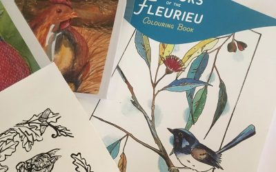 Colours of the Fleurieu; new local colouring book