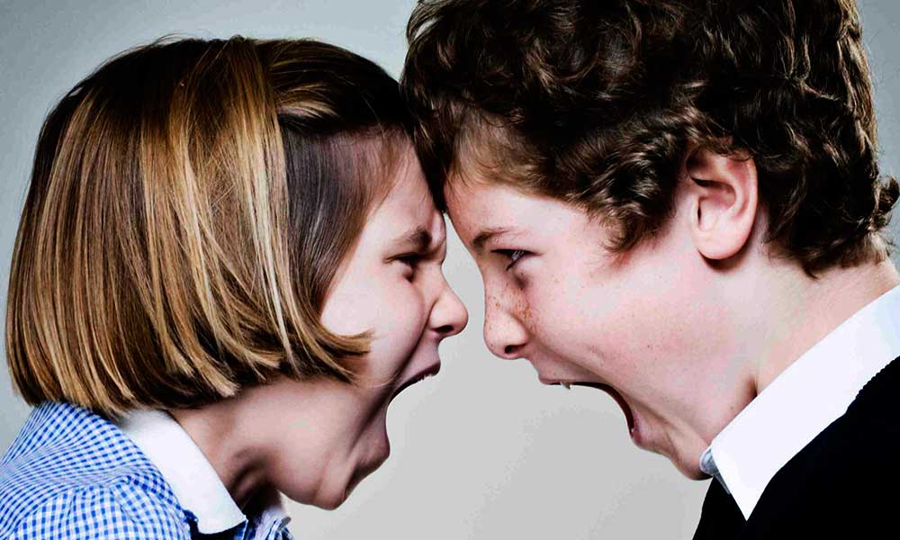 13 ideas to reduce constant sibling fighting