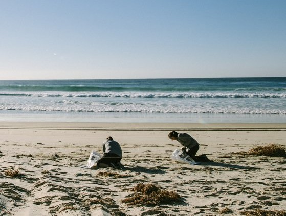 sea shepherd marine debris campaign