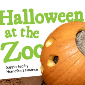 halloween at the adelaide zoo