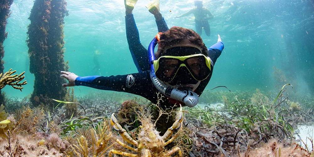 top snorkelling spots in SA