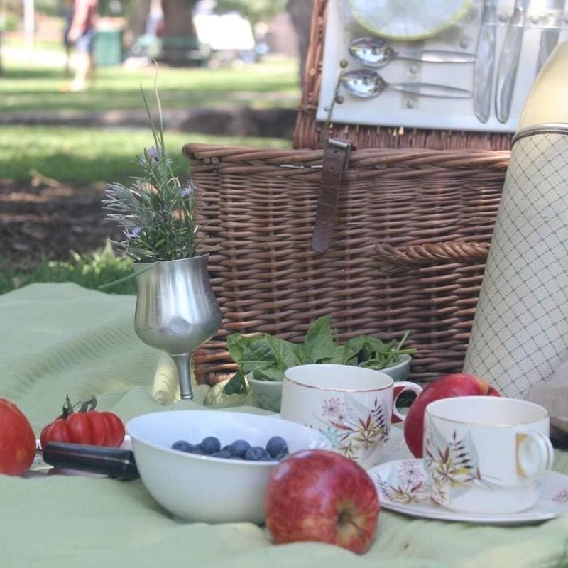 aldinga community picnic