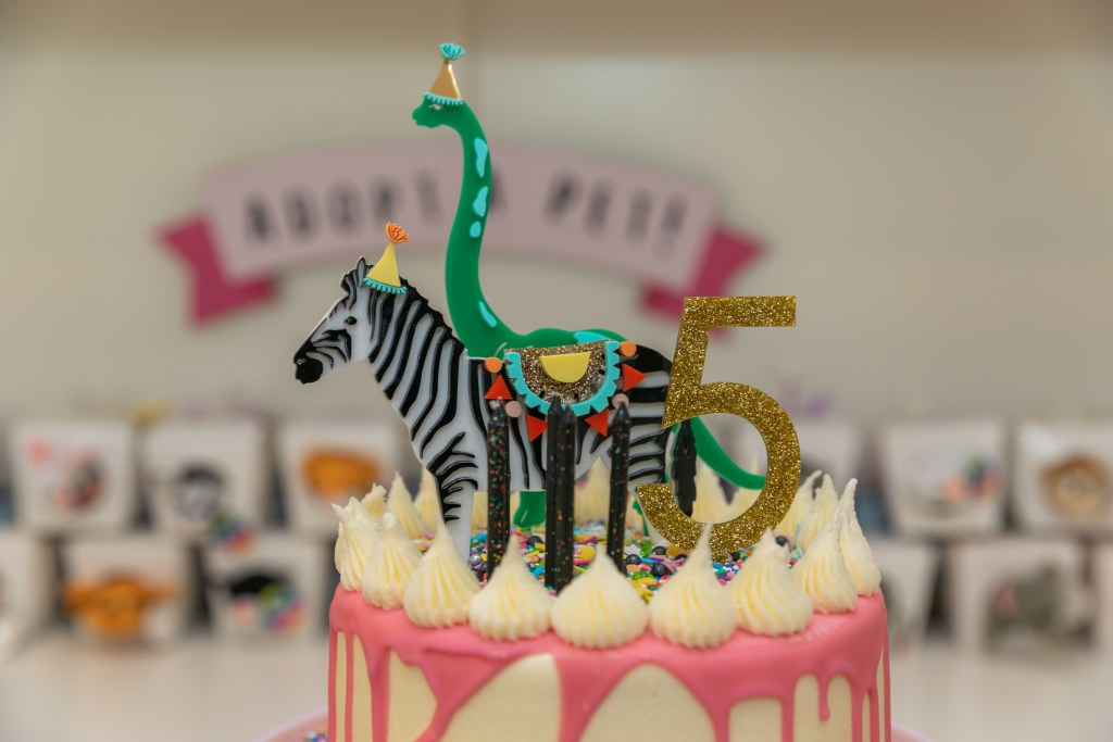 kids party animal theme