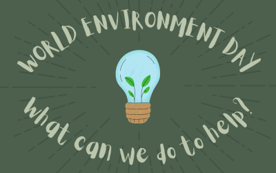 World Environment Day – What can we do to make a difference?