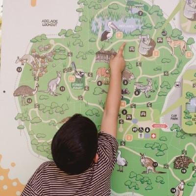 wildification cleland school holiday program