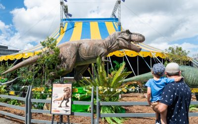 GET READY TO HEAR THE ROAR – 'Jurassic Creatures' is coming!