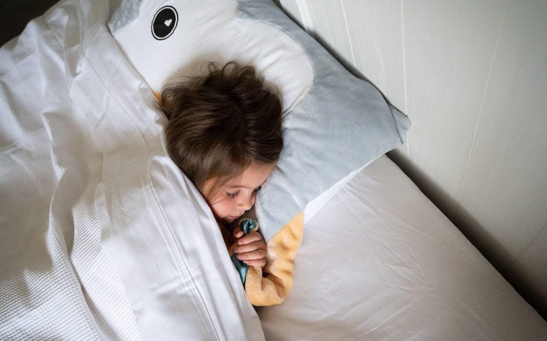 Muluzu Pillowcase Pals: The calming sleep-support sidekick designed for kids by kids!