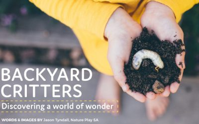 BACKYARD CRITTERS: DISCOVERING A WORLD OF WONDER